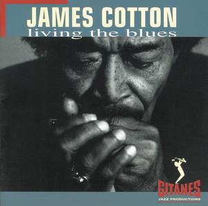 Living the Blues album