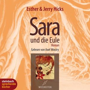 Sara und die Eule (Gekürzt) Audiobook