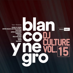 Blanco Y Negro Music DJ Culture, Vol. 15 album