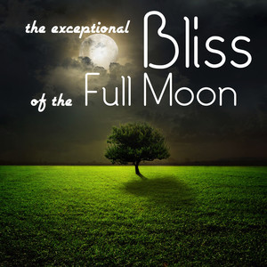 The Exceptional Bliss of the Full Moon: Magnificent Sounds for Relaxation, Meditation and Deep Sleep with Natural White Noise Albumcover