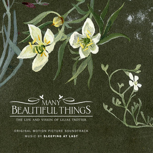 Many Beautiful Things (Original Motion Picture Soundtrack) Albumcover