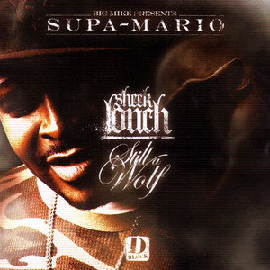 Sheek Louch D-Block D.B.L.O.C.K. cover