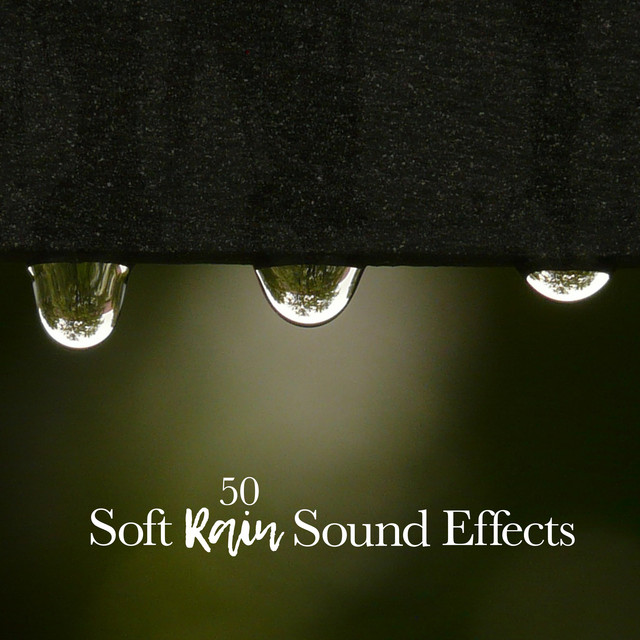 50 Soft Rain Sound Effects by Pro Sound Effects Library on Spotify
