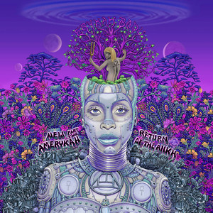 New Amerykah Part Two: Return Of The Ankh Albumcover