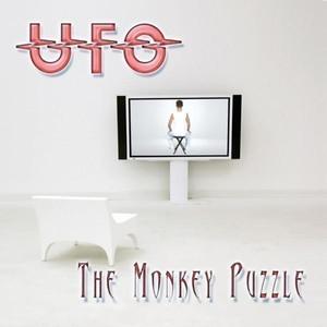 The Monkey Puzzle album