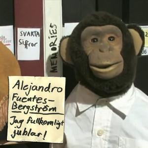 Alejandro Fuentes-Bergström