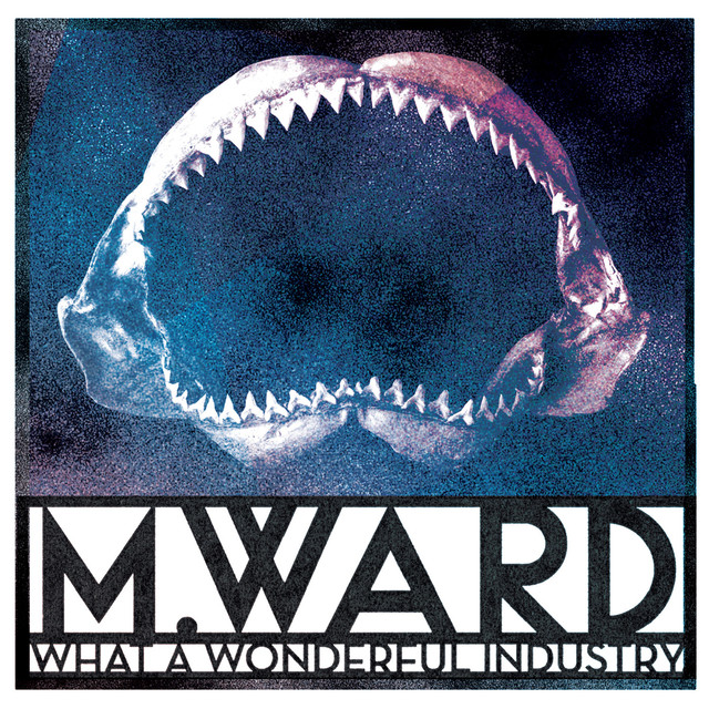 Album cover for What a Wonderful Industry by M. Ward