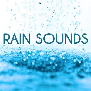 Rain Sounds Albumcover