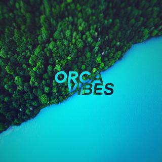 Orca Vibes Artist | Chillhop