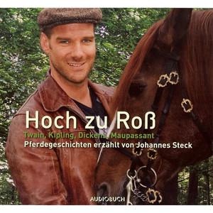 Hoch zu Roß - Pferdegeschichten erzählt von Johannes Steck (Gekürzte Fassung) Audiobook