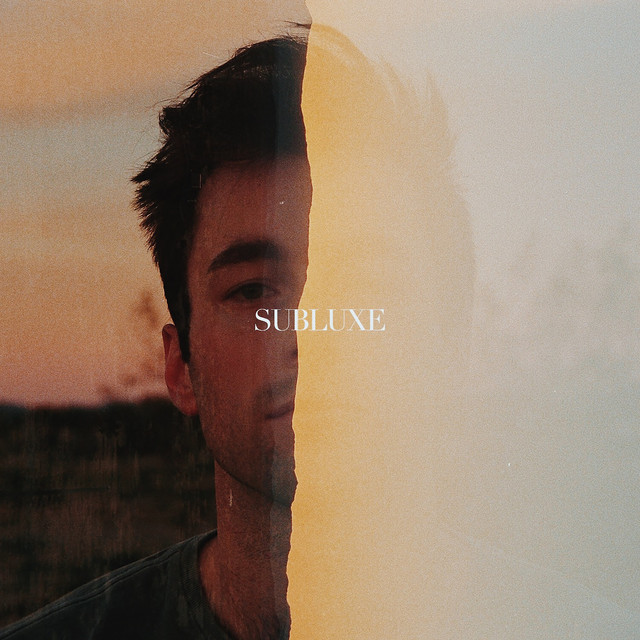 Album cover for Subluxe by Healy