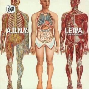 A.D.N.Y. presents Leiva