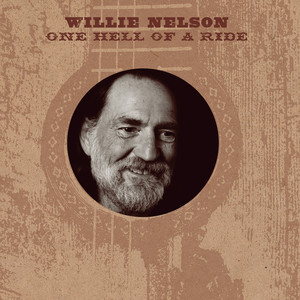 Willie Nelson Troublemaker cover