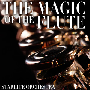 The Magic of the Flute Albumcover
