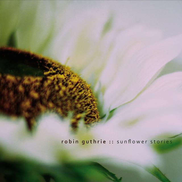 Sunflower Stories