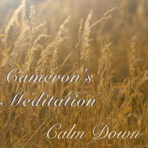 Cameron's Meditation - Calm Down Albumcover