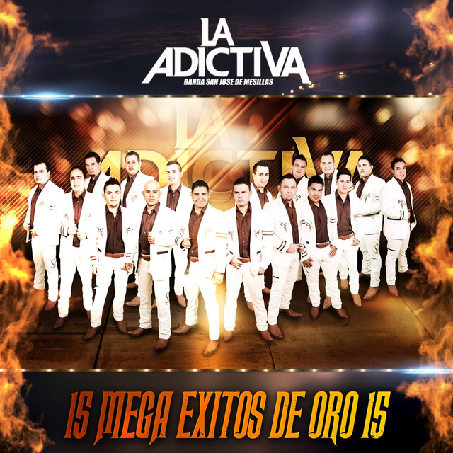 15 MEGA ÉXITOS DE ORO 15 Albumcover