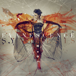Evanescence Imperfection cover