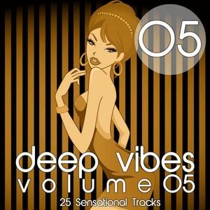 Deep Vibes, Vol. 5 Albumcover