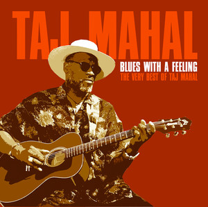 Taj Mahal Mockingbird cover