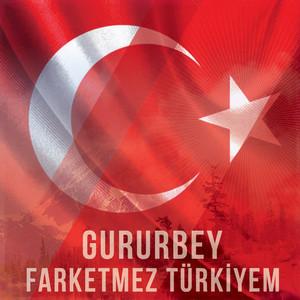 Farketmez Türkiyem (Yeni Version) Albümü