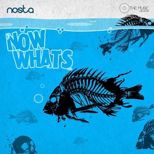 Now What's Albümü