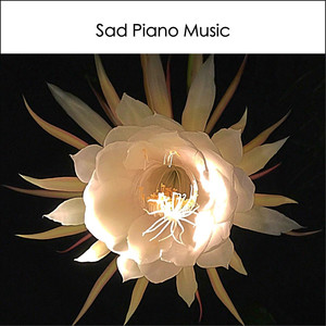 Sad Piano Music 1: Instrumental Love Songs Sentimental Emotional Dramatic Melancholic - Sad Song