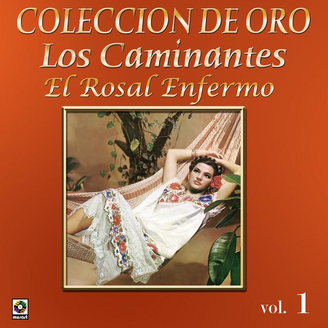 Colección de Oro Vol. 1 el Rosal Enfermo