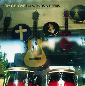Diamonds & Debris album