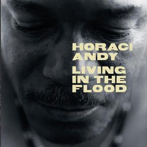 Living in the Flood album