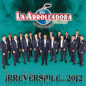 Irreversible... 2012 Albumcover