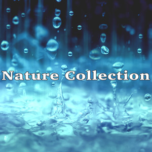 Nature Collection Albumcover