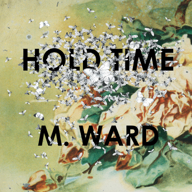 M. Ward Hold Time album cover