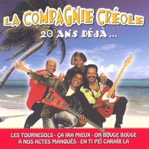20 ans déjà... (14 Hits) album