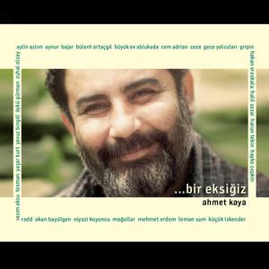 Bir Eksiğiz: Ahmet Kaya Albümü