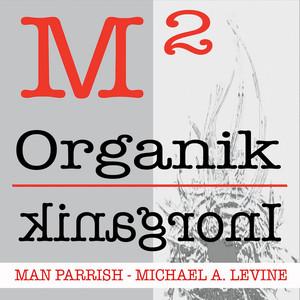 M2 - Organik / Inorganik