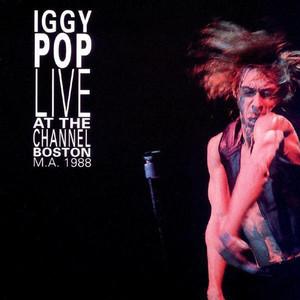 Iggy Pop, James Williamson Johanna cover