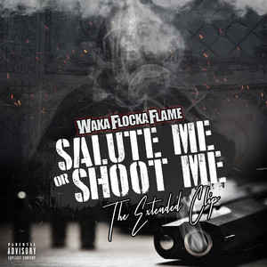 Salute Me or Shoot Me: The Extended Clip Albümü