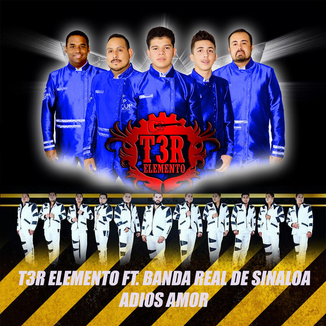 Adios Amor (feat. Banda Real De Sinaloa)