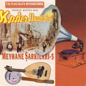 Meyhane Şarkıları, Vol.5 (Kader Unuttu Beni) Albümü