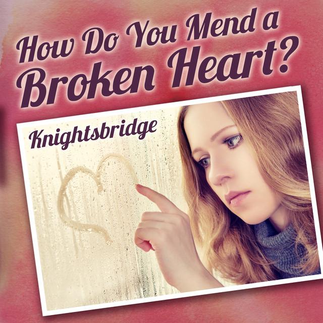 How Do You Mend a Broken Heart Albumcover