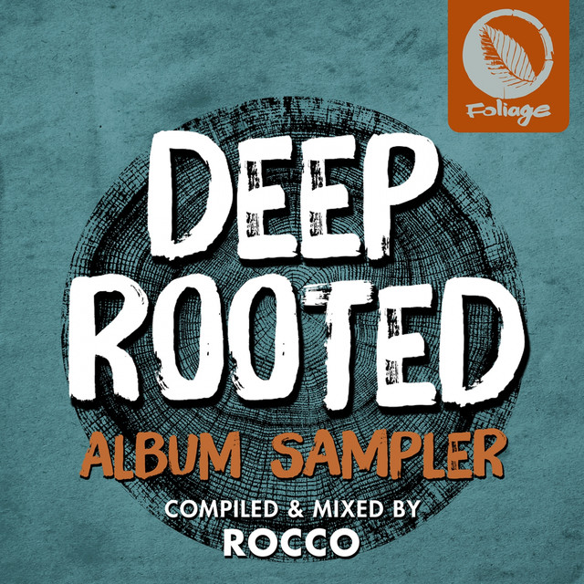 Nathan Haines, Verna Francis, Rocco - Earth Is The Place (Rocco Rodamaal Deep Mix)
