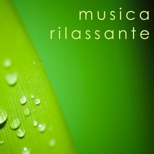 armonia benessere  musica  musica rilassante  canzoni