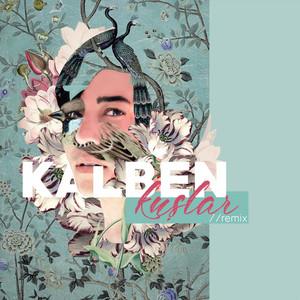 Kuşlar (Remix) Albümü