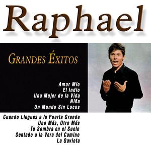 Grandes Éxitos de Raphael album
