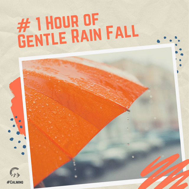 # 1 Hour of Gentle Rain Fall