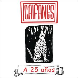 A 25 años album