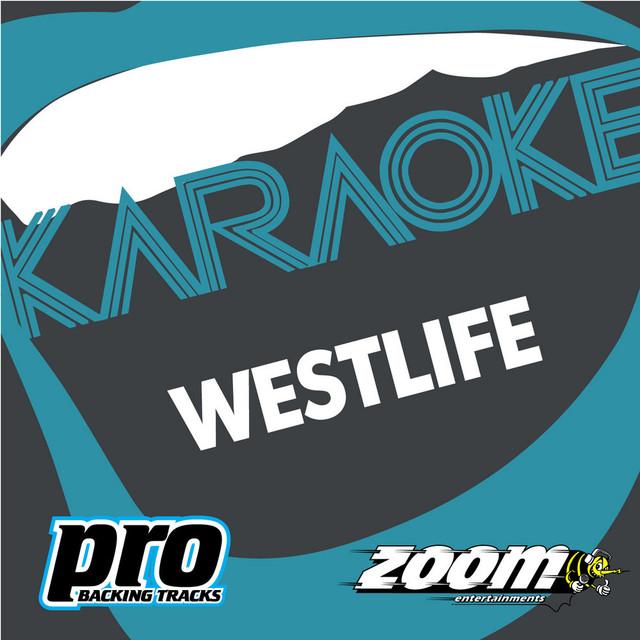You Raise Me Up (Karaoke Version), a song by Zoom Karaoke on