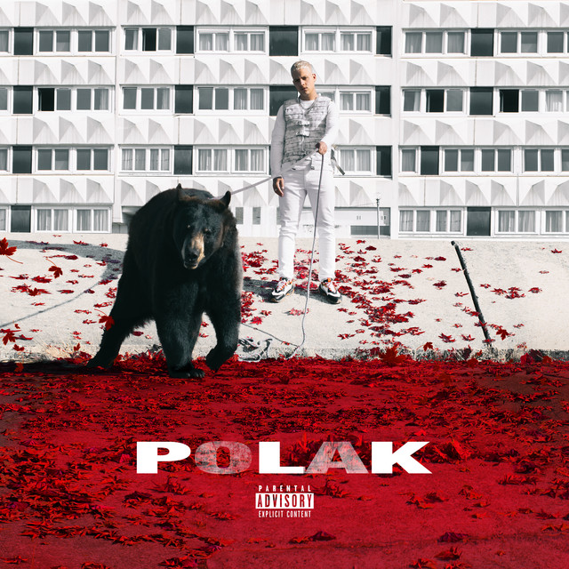 Album cover for Polak by PLK