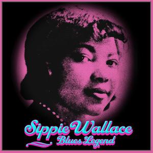 Bonnie Raitt, Sippie Wallace Women Be Wise cover